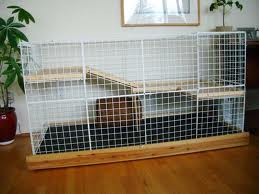 Housing your rabbit at home pets for Construire une cage a lapin exterieur